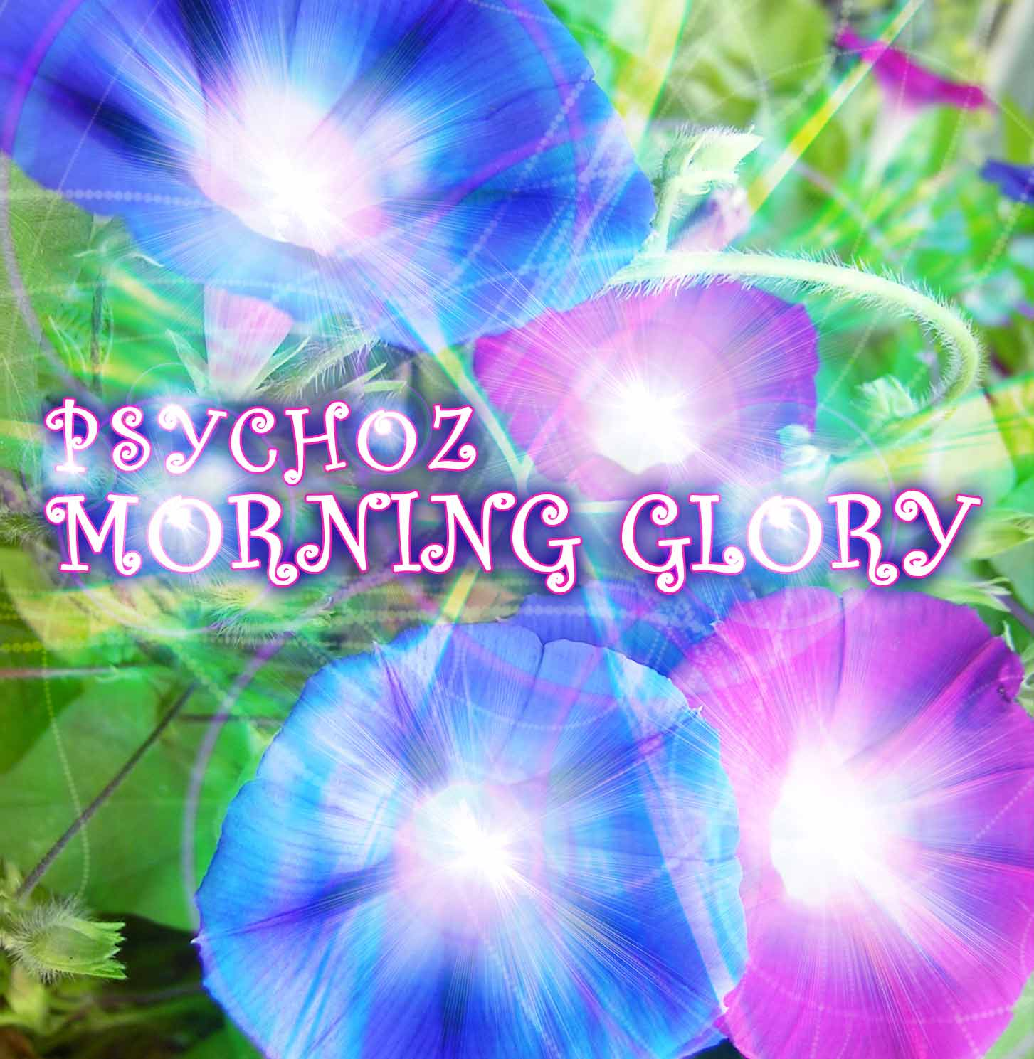 GeoMagnetic.TV | RELEASES | Psychoz - Morning Glory